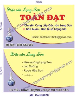 In card visit tại Điện Biên