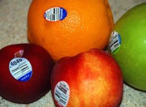 In tem dán trái cây chất lượng cao